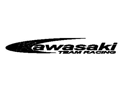 Kawasaki Team Racing Eshop Stickers